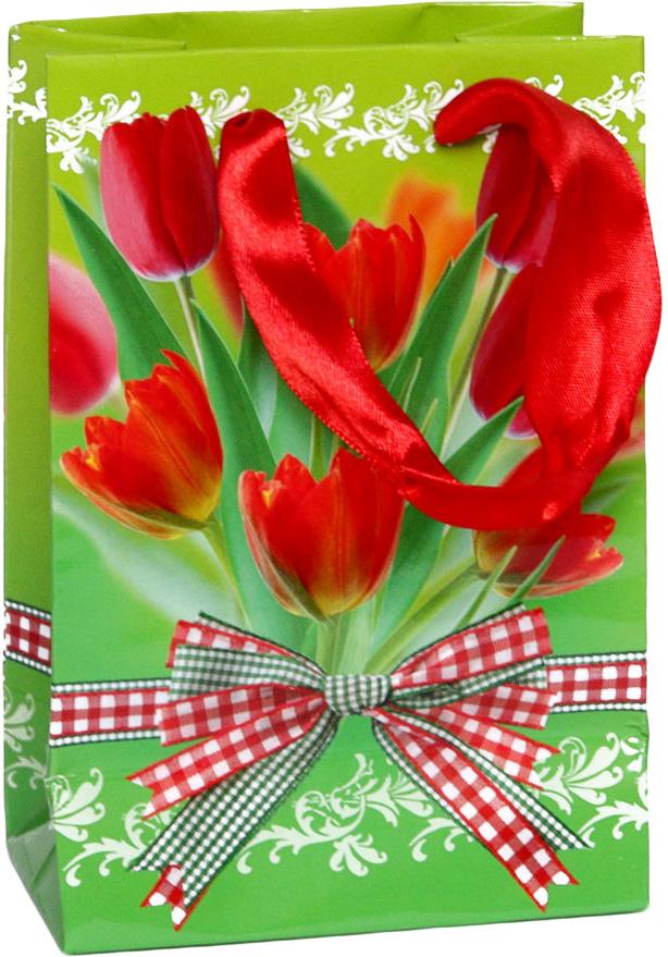 Пакет подарочный Тюльпаны, 10 х 15 х 6 см4610009210117Подарочный пакет Тюльпаны выполнен из плотной ламинированной бумаги с красочным цветочным рисунком. Дизайн очень яркий и заряжает весенним настроением. Дно изделия укреплено плотным картоном, который позволяет сохранить форму пакета и исключает возможность деформации под тяжестью подарка. Для удобной переноски на пакете имеются две атласные ручки. Подарок, преподнесенный в оригинальной упаковке, всегда будет самым эффектным и запоминающимся. Окружите близких людей вниманием и заботой, вручив презент в нарядном, праздничном оформлении.