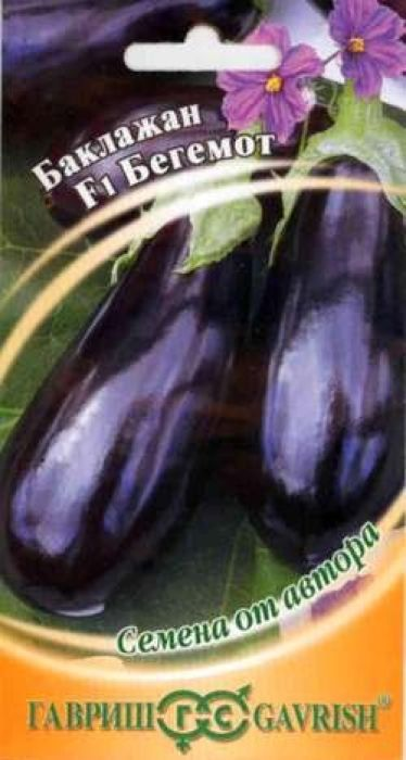 Семена Гавриш Баклажан. Бегемот F14601431001008Среднеспелый (100-110 дней от всходов до плодоношения) высокорослый (0,7-1,5 м в пленочных теплицах, до 2,5 м в остекленных теплицах) гибрид для пленочных и остекленных теплиц. Плоды грушевидной формы, длиной 14-18 см, диаметром 4,5-8,0 см, темно-фиолетовой окраски, с глянцевой поверхностью, массой 250-350 г. Мякоть средней плотности, желтовато-белая, без горечи. Урожайность одного растения 1,8-2,5 кг, до 6 кг в зависимости от условий. Посев на рассаду производят в конце февраля. Пикировку - в фазе семядолей. Высадку рассады в пленочные телицы - в конце мая в возрасте 50-60 дней.Формировка: удаление всех боковых побегов и листьев до первой развилки.Схема посадки: 40 х 60 см. Уважаемые клиенты! Обращаем ваше внимание на то, что упаковка может иметь несколько видов дизайна. Поставка осуществляется в зависимости от наличия на складе.