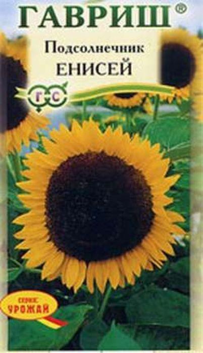 Семена Гавриш Подсолнечник. Енисей4601431011212Уважаемые клиенты! Обращаем ваше внимание на то, что упаковка может иметь несколько видов дизайна. Поставка осуществляется в зависимости от наличия на складе.