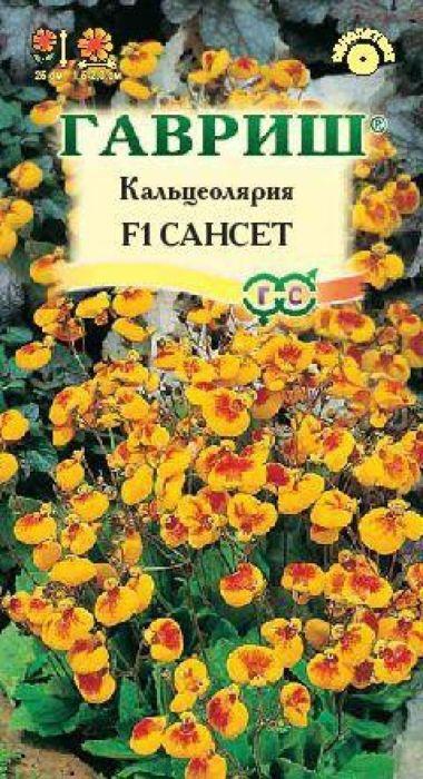 Семена Гавриш Кальцеолярия. Сансет4601431013292
