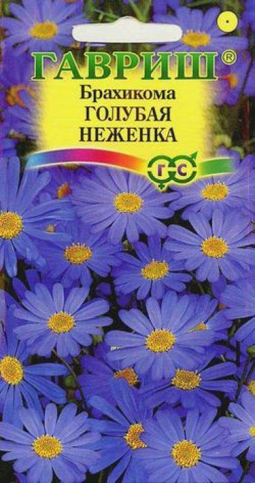 Семена Гавриш Брахикома. Голубая неженка4601431014497Однолетник высотой 20 см. Сильноветвистое растение с изящными листьями и голубыми соцветиями-корзинками диаметром 3-4 см. Обильно цветет с середины июня по октябрь. Предпочитает плодородные, хорошо дренированные почвы и солнечные места. Посев на рассаду проводят в марте в ящики с легким песчаным грунтом. Семена слегка вдавливают в почву, не присыпая землей. Посадочную емкость накрывают стеклом и ставят в освещенное место. При температуре +20 °С всходы появляются на 8-12 день. Сеянцы пикируют в фазе 2-3 настоящих листьев. Рассаду высаживают в мае через 10-15 см. Для лучшего ветвления верхушки молодых растений прищипывают. Применяется для оформления клумб, рабаток, бордюров, альпийских горок, как горшечная культура.Товар сертифицирован.Уважаемые клиенты! Обращаем ваше внимание на то, что упаковка может иметь несколько видов дизайна. Поставка осуществляется в зависимости от наличия на складе.