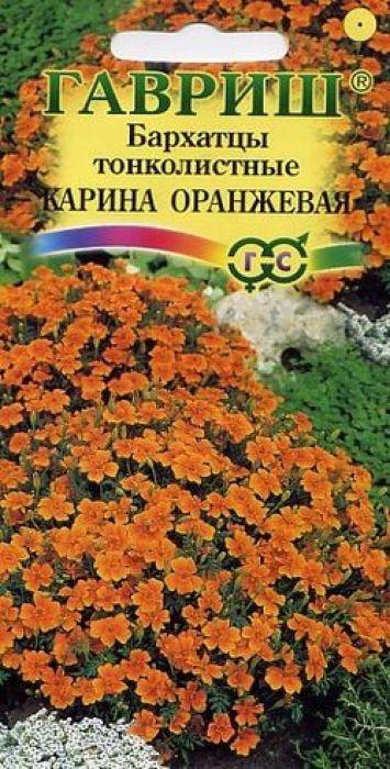 Семена Гавриш Бархатцы тонколистные. Карина Оранжевая4601431016019Уважаемые клиенты! Обращаем ваше внимание на то, что упаковка может иметь несколько видов дизайна. Поставка осуществляется в зависимости от наличия на складе.