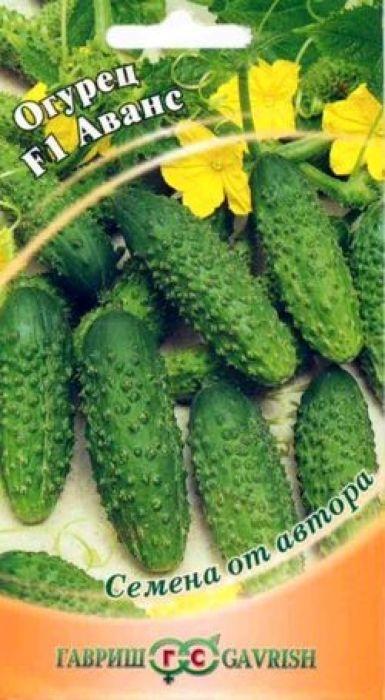 Семена Гавриш Огурец. Аванс F14601431016453Скороспелый (39-44 дня от всходов до плодоношения) партенокарпический гибрид женского типа цветения, предназначен для выращивания в открытом и защищенном грунте. Растения сильнорослые, средневетвистые. Гибрид ценится за ограниченный рост боковых побегов. В каждом узле закладывается по 3-5 завязей. Плоды цилиндрические, длиной 11-13 см, диаметром 3,5-4 см, массой 120-130 г, темно-зеленого цвета, частобугорчатые, белошипые. Посев на рассаду производят в конце апреля - начале мая. Высадку в грунт производят в конце мая - начале июня в фазе двух-трех настоящих листьев под временные пленочные укрытия. Посев в открытый грунт производится в конце мая - в начале июня. Использование плодов универсальное (в свежем виде, засолка, маринование). Гибрид устойчив к настоящей и ложной мучнистым росам, оливковой пятнистости и корневым гнилям. Урожайность 12-13 кг/кв.м. Оптимальная для прорастания семян температура почвы +25-30 °С.Товар сертифицирован.Уважаемые клиенты! Обращаем ваше внимание на то, что упаковка может иметь несколько видов дизайна. Поставка осуществляется в зависимости от наличия на складе.