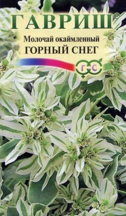 Семена Гавриш Молочай окаймленный. Горный снег4601431016668Однолетнее растение с прямостоячими стеблями, до 70 см высотой. Листья овальные, светло-зеленые, к серединеавгуста их края окрашиваются в серебристо-белый цвет. Цветки мелкие, окружены прицветниками с широкимибелыми придатками. Благодаря им верхушка побегов становится похожей на диковинный цветок. Цветет с конца июля до заморозков. Хорошо растет на открытых и полузатененных местах с любой почвой, предпочитая легкие питательные почвы сторфом или компостом. Размножают посевом семян в марте в горшки или в конце апреля-начале мая в открытый грунт. Всходы появляютсячерез 10-12 дней. Высаживают одиночно или группами на газонах, цветниках, около кустов, сохраняя расстояниемежду растениями в 25-30 см. Побеги пригодны для срезки. Уважаемые клиенты! Обращаем ваше внимание на то, что упаковка может иметь несколько видов дизайна.Поставка осуществляется в зависимости от наличия на складе.