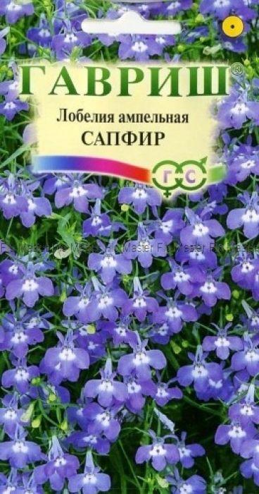 Семена Гавриш Лобелия ампельная. Сапфир4601431019126Растение, культивируемое как однолетник из семейства Лобелиевые. Побеги тонкие, стелющиеся, длиной до 50 см. Цветение обильное с июня до осени. Цветки ярко-синие с белым глазком, до 2 см в диаметре. Светолюбива, влаголюбива и холодостойка. Предпочитает рыхлые и умеренно плодородные почвы, в засушливый период необходим полив. Выращивают рассадным способом. Семена высевают в феврале-марте. Всходы появляются через 9-10 дней. Рассаду высаживают в открытый грунт во второй половине мая. Используется для посадки в подвесные кашпо и корзины, вазы, балконные ящики.Товар сертифицирован.Уважаемые клиенты! Обращаем ваше внимание на то, что упаковка может иметь несколько видов дизайна. Поставка осуществляется в зависимости от наличия на складе.
