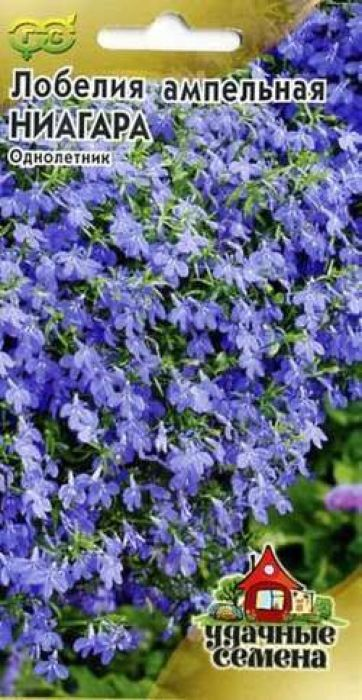 Семена Гавриш Лобелия ампельная Ниагара4601431024434Изящное растение с каскадной формой куста, с обильно цветущими, свешивающимися побегам. Цветки темно-синие, до 2 см в диаметре, двугубые. Цветет обильно, в течение всего сезона. Мелкие семена лобелии для равномерности смешивают с сухим песком в соотношении 1:50 и не заделывают. Оптимальная для прорастания семян температура почвы +20-22 °С. Лобелия хороша в вазонах, балконных ящиках и висячих корзинах, ее высаживают в саду на подпорных стенках и в бордюрах в качестве почвопокровного растения. Для большего кущения растения прищипывают.Товар сертифицирован.Уважаемые клиенты! Обращаем ваше внимание на то, что упаковка может иметь несколько видов дизайна. Поставка осуществляется в зависимости от наличия на складе.