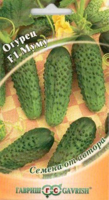 Семена Гавриш Огурец. Муму F14601431030787Скороспелый (43-48 дней от всходов до плодоношения) партенокарпический гибрид с букетным заложениемзавязей (4-6 в одном узле!). Растение с ограниченным ростом боковых побегов, что облегчает уход и сбор урожая.Предназначен для выращивания в открытом и защищенном грунте, а также под временными пленочнымиукрытиями. Посев на рассаду в конце апреля. Высадка рассады в грунт в конце мая - начале июня в фазе 3-4-х настоящих листьев. Посев непосредственно в грунт - в мае - июне. Схема посадки 30 х 70 см. Зеленцы цилиндрические, длиной 10-12 см, скрасивыми крупными бугорками, черношипые, массой 90-110 г. Плоды обладают уникальными засолочнымикачествами: хрустящие, ароматные, вкусные, они не теряют своих свойств при консервировании. Гибрид устойчивк настоящей мучнистой росе, оливковой пятнистости, относительно устойчив к ложной мучнистой росе икорневым гнилям. Урожайность: 6-7 кг/растение.Уважаемые клиенты! Обращаем ваше внимание на то, что упаковка может иметь несколько видов дизайна.Поставка осуществляется в зависимости от наличия на складе.
