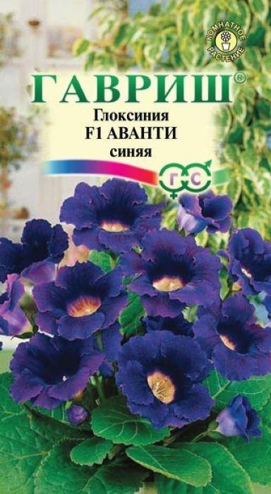 Семена Гавриш Глоксиния синяя. Аванти 5 синяя