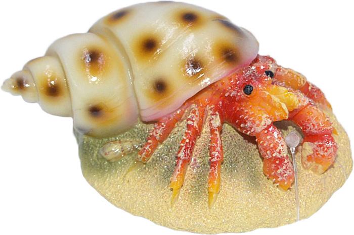 Грот Meijing Aquarium Рак-отшельник. EB-036EB-036Аквариумный грот – это отличный элемент дизайна. Оригинальные аквариумные украшения придают подводному ландшафту завершенный вид, что крайне важно, ведь одной из главнейших функций аквариума в интерьере является функция эстетическая. Но декорация-грот – это еще и прекрасное укрытие для рыбок и иных обитателей подводного мира. Особенно – в том случае, если кто-либо из ваших питомцев проявляет излишнюю агрессивность по отношению к соседям. В таком случае грот для аквариума окажется совершенно незаменимым. Грот Meijing Aquarium прекрасно впишется в любой интерьер аквариума. А в сочетании с другими элементами декора сделает среду обитания ваших рыбок максимально приближенной к морской среде. Декорация абсолютно безвредна для рыб и растений. Грот тонет и не требует дополнительной фиксации в аквариуме. Может использоваться как в пресной, так и в морской воде. Изделие не токсично, не тускнеет и не теряет цвета, краска не облазит.