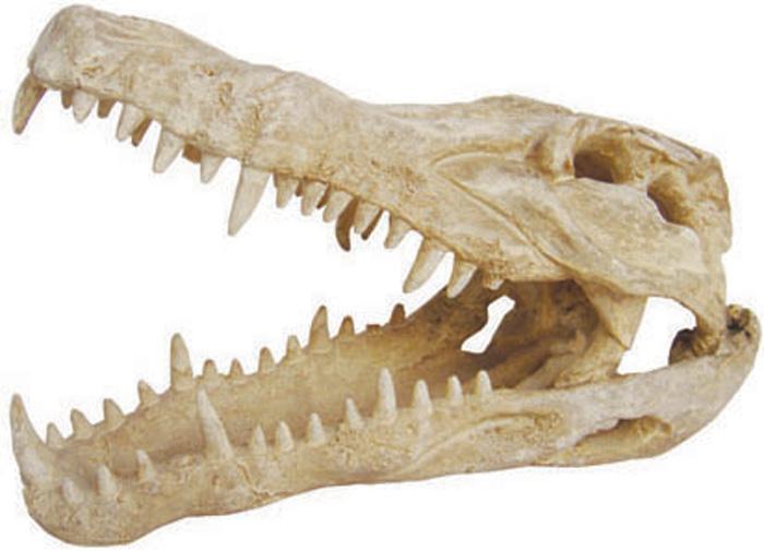 Грот Meijing Aquarium Череп крокодила. MJA-021MJA-021