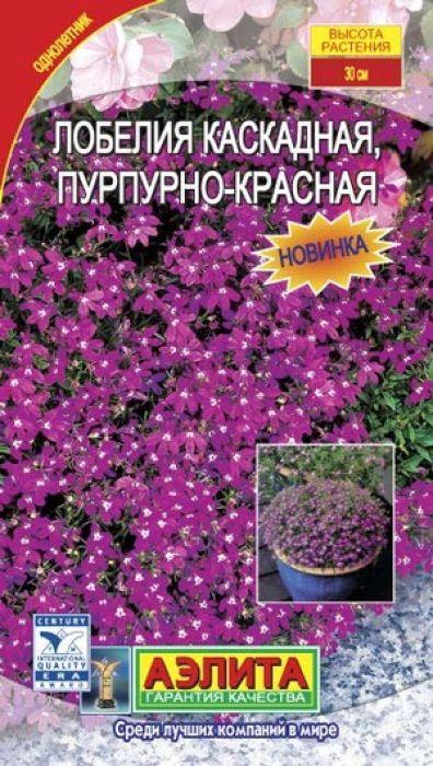 Семена Аэлита Лобелия каскадная пурпурно-красная4601729016806 Уважаемые клиенты! Обращаем ваше внимание на то, что упаковка может иметь несколько видов дизайна. Поставка осуществляется в зависимости от наличия на складе.