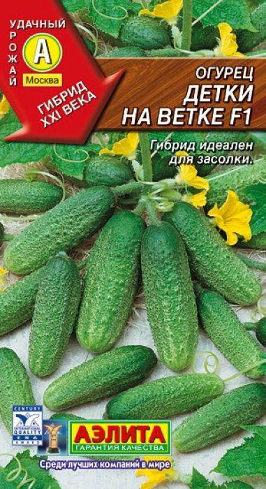 Семена Аэлита Огурец. Детки на ветке F14601729056918Раннеспелый пчелоопыляемый гибрид (от всходов до начала плодоношения 42-45 дней). Рекомендуется для выращивания в открытом грунте и под пленочными укрытиями. Урожайность высокая, 10-11 кг/м2. Растения сильнорослые, с женским типом цветения. Завязи закладываются пучками, в пазухе каждого листа одновременно формируется 2-3 огурчика. Зеленцы цилиндрические, мелкобугорчатые, массой 90-100 г, без пустот. Отличного вкуса, не горчат, сочные и хрустящие. Великолепен в свежем виде, в салатах, прекрасно подходит для всех видов соления и маринования.Выращивают посевом семян в грунт или через рассаду. Возраст рассады – 20-30 дней. Плотность посадки в открытом грунте 4-5 растений, в теплицах 2-3 растения на 1 м2. В теплицах растения подвязывают к шпалере и формируют в один стебель. Боковые побеги прищипывают над 2-3 листом. Растениям необходимы регулярные поливы, прополки, рыхления и подкормки. Сбор плодов нужно проводить регулярно каждые 2-3 дня.Уважаемые клиенты! Обращаем ваше внимание на то, что упаковка может иметь несколько видов дизайна. Поставка осуществляется в зависимости от наличия на складе.