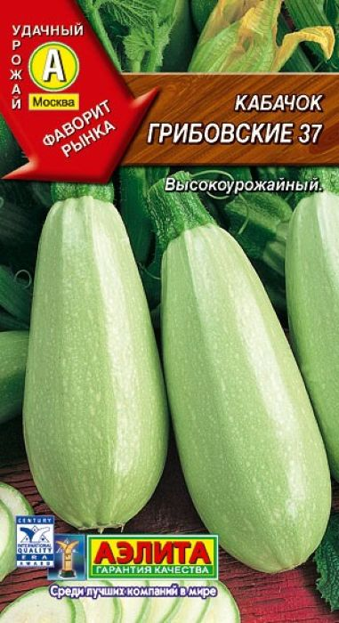 Семена Аэлита Кабачок. Грибовские 374601729079986