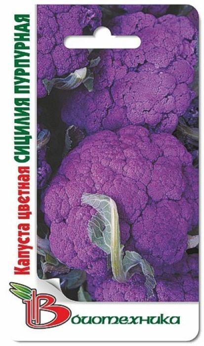 Семена Биотехника Капуста цветная. Сицилия Пурпурная4606362080290 Уважаемые клиенты! Обращаем ваше внимание на то, что упаковка может иметь несколько видов дизайна. Поставка осуществляется в зависимости от наличия на складе.