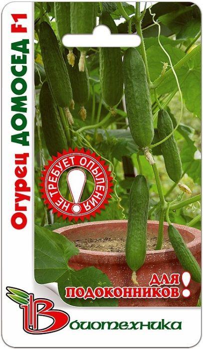 Семена Биотехника Огурец. Домосед F14606362973066Домосед F1 - 100% партенокарпический гибрид с женским типом цветения. При посеве в осенне-зимний период, от всходов до начала плодоношения 56-61 день, в весенне-летний при весеннем посеве 43-45 дней. Плод цилиндрический с гладкой, глянцевой поверхностью, длиной 14 см, диаметром 3,5-4 см. Генетически свободен от горечи. Предназначен для потребления в свежем виде. Вынослив к мучнистой росе и ложной мучнистой росе. Пригодный для комнатной культуры гибрид. Может выращиваться круглый год, как в зимне-весенний, так и в весенний и летне-осенний культурообороты. Вынослив к затенению. Очень красивые и вкусные огурчики. Товар сертифицирован.Уважаемые клиенты! Обращаем ваше внимание на то, что упаковка может иметь несколько видов дизайна. Поставка осуществляется в зависимости от наличия на складе.