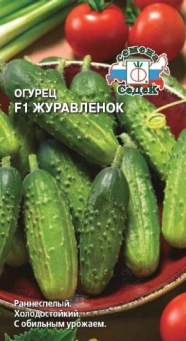 Семена Седек Огурец. Журавленок F14607015182484Раннеспелый (48-50 дней) пчелоопыляемый гибрид для открытого грунта. Растение длинноплетистое. Зеленцы эллипсовидные, крупнобугорчатые, черношипые, темно-зеленые, длиной 10- 12 см, массой 80-110 г, плотные, хрустящие, с высокими вкусовыми качествами. Урожайность 5,6-6,5 кг/м2. Ценность гибрида: обладает комплексной устойчивостью к болезням и прохладной пасмурной погоде,холодостойкость, раннее и интенсивное формирование урожая, обильное плодоношение и стабильнаяурожайность. Рекомендуется для употребления в свежем виде, консервирования и засола. Уважаемые клиенты! Обращаем ваше внимание на то, что упаковка может иметь несколько видов дизайна.Поставка осуществляется в зависимости от наличия на складе.