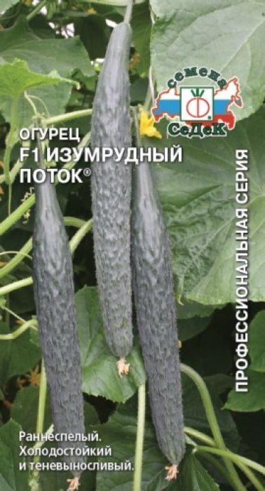 Семена Седек Огурец. Изумрудный поток F14607015182583 Уважаемые клиенты! Обращаем ваше внимание на то, что упаковка может иметь несколько видов дизайна. Поставка осуществляется в зависимости от наличия на складе.