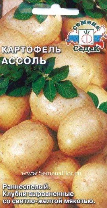 Семена Седек Картофель. Ассоль семена седек тыква бутылочная декоративная
