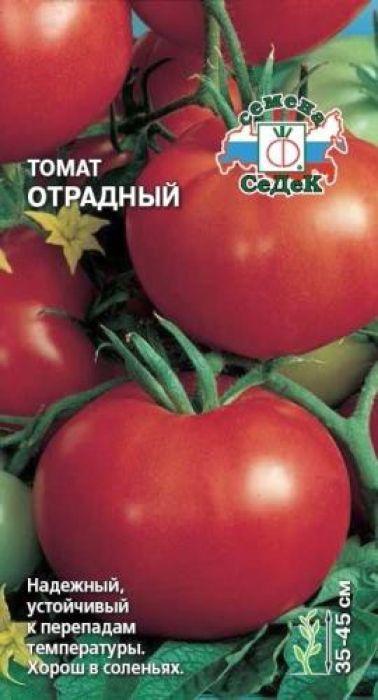 Семена Седек Томат. Отрадный4607116261033Раннеспелый (92-102 дня) сорт. Растение штамбовое, 35-45 см высотой. Не требуетпасынкования. Плоды округлые, гладкие, красные, массой 50-70 г, очень сочные,отличного вкуса. Ценность сорта: холодостойкость, устойчивость кперепадам температуры, за счет скороспелости уходит от фитофтороза,дружное созревание. Назначение универсальное. Уважаемые клиенты! Обращаем ваше внимание на то, что упаковка может иметьнесколько видов дизайна. Поставка осуществляется в зависимости от наличия наскладе.