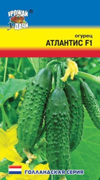Семена Урожай удачи Огурец. Атлантис F14607127312267От посева до созревания первых плодов - 50-52 дня. Растение среднемощное. Плоды зеленого цвета, крупнобугорчатые, генетически без горечи. Гибрид высокоустойчив к мучнистой и ложной мучнистой росе, оливковой пятнистости, вирусу огуречной мозаике.Предназначен для выращивания в открытом и защищенном грунте. Рекомендуется для засолки.Агротехника: Посев - V-VI, высадка рассады - VI, схема посадки - 40 х 60 см, уборка урожая - VII-IX.Товар сертифицирован.Уважаемые клиенты! Обращаем ваше внимание на то, что упаковка может иметь несколько видов дизайна. Поставка осуществляется в зависимости от наличия на складе.
