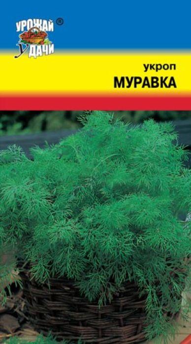 Семена Урожай уДачи Укроп. Муравка4601729043048Среднеспелый сорт. От всходов до уборки на зелень 30-40 дней. Розетка листьев приподнятая, достигает 30-35 см в высоту и имеет 10-14 крупных, сочных, очень ароматных, нежных листьев. Сорт отличается высокой урожайностью, высокими товарными качествами зелени, сильной облиствленностью растения и устойчивостью к мучнистой росе. Используется для потребления в свежем виде, сушки и на специи.Агротехника: Укроп - холодостойкое, светолюбивое растение, предпочитает плодородные, увлажненные участки. Высевают семена укропа в грунт в конце апреля – начале мая на подготовленную почву, без заделки, но с обязательным мульчированием торфом на 2-3 см. Всходы появляются на 10-15 день. Уход за посевами состоит в рыхлении междурядий, поливе и подкормке.Уважаемые клиенты! Обращаем ваше внимание на то, что упаковка может иметь несколько видов дизайна. Поставка осуществляется в зависимости от наличия на складе.
