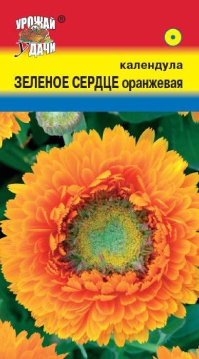 Семена Урожай удачи Календула оранжевая. Зеленое сердце4607127331800Серединка соцветия зеленая с хохолком. Куст раскидистый, высотой 55-60 см. Побеги прочные. Листья крупные, светло-зеленые. Соцветия оранжевые, махровые, крупные, 6-7 см в диаметре. Цветет с июня по сентябрь. Используют для групп, рабаток, бордюров и на срезку.Агротехника: растение светолюбивое, холодостойкое, выносит заморозки до –5°C, неприхотливое. Предпочитает плодородные, достаточно увлажненные почвы. При выращивании рассады посевы проводят в апреле в ящики. Глубина заделки семян 1,0 см. При температуре почвы +15°C всходы появляются на 10-14 день. В открытый грунт рассаду высаживают в мае, выдерживая расстояние между растениями 20-25 см. Можно сеять в открытый грунт непосредственно на место в мае.Уважаемые клиенты! Обращаем ваше внимание на то, что упаковка может иметь несколько видов дизайна. Поставка осуществляется в зависимости от наличия на складе.