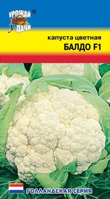 Семена Урожай удачи Капуста цветная. Балдо F14607127337277Гибрид раннего срока созревания. Период от всходов до технической спелости 80-85 дней. Формирует головки высокого качества круглой формы, белого цвета, массой 1-2 кг. Рекомендуется выращивать в осеннее-летний период. Используется для переработки и заморозки.Агротехника: Цветная капуста очень требовательна к питанию и влаге, она не выносит кислых почв. Хорошие предшественники - бобовые, огурец, картофель. Посев на рассаду проводят в середине марта. Через 7-10 дней после появления всходов сеянцы пикируют. Рассада готова к посадке через 35-40 дней после всходов. Сажают ее в конце апреля по схеме 35 х 50 см. Дальнейший уход заключается в поливе, прополке, рыхлении и регулярной подкормке.Уважаемые клиенты! Обращаем ваше внимание на то, что упаковка может иметь несколько видов дизайна. Поставка осуществляется в зависимости от наличия на складе.