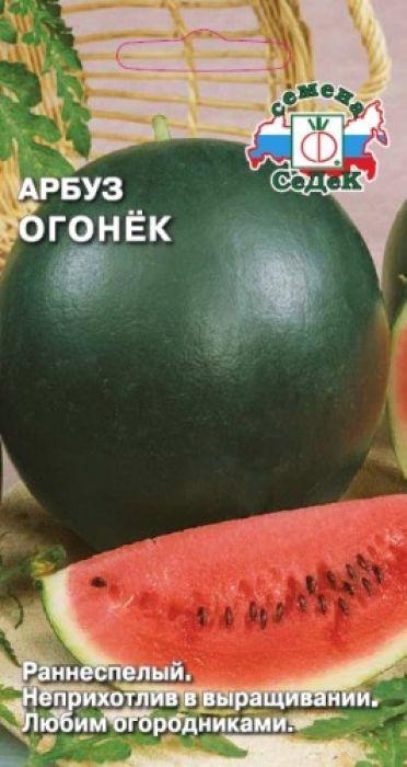 Семена Седек Арбуз. Огонек4607149401505Раннеспелый (от всходов до созревания плодов 70-85 дней) сорт.Растение коротко- или среднеплетистое, длиной до 1,8 м. Плоды шаровидные, черно-зеленого цвета, некрупные, массой 1,7-2,3 кг. Кора гладкая, плотная. Мякоть оранжево-красная, нежная, сочная, сладкая. Урожайность с растения 5-7 кг.Ценность сорта: устойчивость к мучнистой росе и антракнозу, неприхотливость выращивания.Рекомендуется для употребления в свежем виде, засолки. Уважаемые клиенты! Обращаем ваше внимание на то, что упаковка может иметь несколько видов дизайна. Поставка осуществляется в зависимости от наличия на складе.