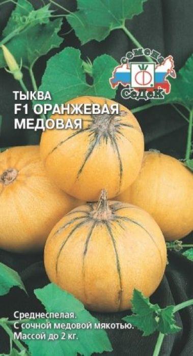 Семена Седек Тыква. Оранжевая Медовая поиск семена тыква твердая дачная 10 шт