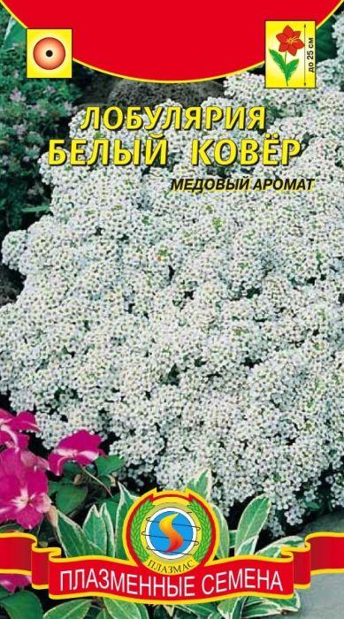 Семена Плазмас Алиссум. Белый Ковер4607171981143