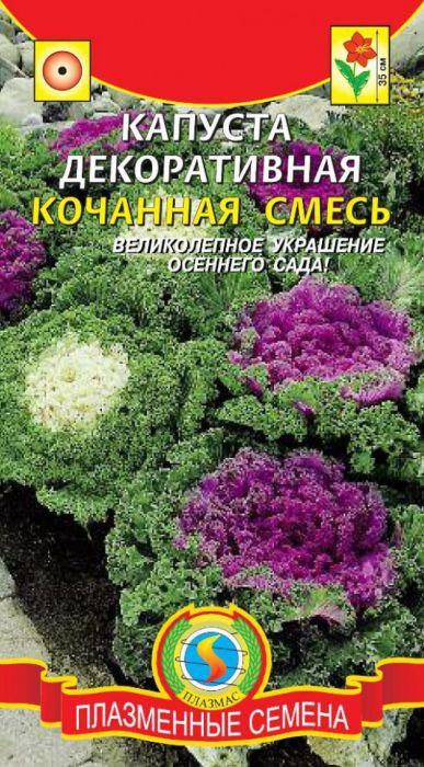Семена Плазмас Капуста декоративная. Кочанная смесь4607171981662