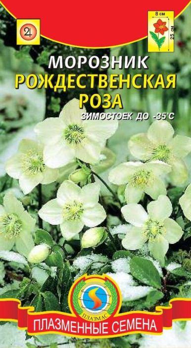 Семена Плазмас Морозник. Рождественская Роза4607171981990Один из самых красивых и популярных видов. Вечнозеленый многолетник. Цветки у него очень крупные, снежно-белые, только снаружи с легким розовым оттенком, который с возрастом постепенно усиливается. Что еще ценно: цветок смотрит почти что вверх, а не поникает. Это наиболее популярные обитатели тенистых участков альпинария. Используют для выгонки зимой: осенью корневища высаживают в горшки с хорошей садовой землей и выставляют на светлые солнечные окна в прохладное помещение. Земля должна быть влажной постоянно. В течение всей зимы (из сформированных растениями еще с осени почек) будут последовательно распускаться цветки. Весной подвергшиеся выгонке растения высаживают в затененное место сада.ПОСЕВ: семенам нужна двухэтапная стратификация: сначала теплый, затем холодный период. Сеять в горшок и месяца 3 держать при 20-22°C, а потом в холодильнике (2-4°С). Надо только учесть, что прорастание в холодильнике может начаться уже через месяц, а может затянуться и на 3 месяца. Необходимо поливать и следить, чтобы в нем не завелась плесень, лучше использовать смесь торфа с песком (3:1) - она слабо поражается плесенью. Сеянцы пикируют в полузатененные места в стадии одного - двух настоящих листочков, выдерживая расстояние 20 см. На постоянное место высаживают в августе-сентябре. Размещают в полузатененные места, но они хорошо выдерживают и не очень глухую тень, и солнце при регулярном поливе. Предпочтительны хорошо удобренные, умеренно влажные, известковые почвы.УХОД: умеренный полив. После цветения почву мульчируют компостом или хорошо разложившимся торфом. Долговечны, на одном месте могут расти десятки лет.ЦВЕТЕНИЕ: с начала апреля.Уважаемые клиенты! Обращаем ваше внимание на то, что упаковка может иметь несколько видов дизайна. Поставка осуществляется в зависимости от наличия на складе.
