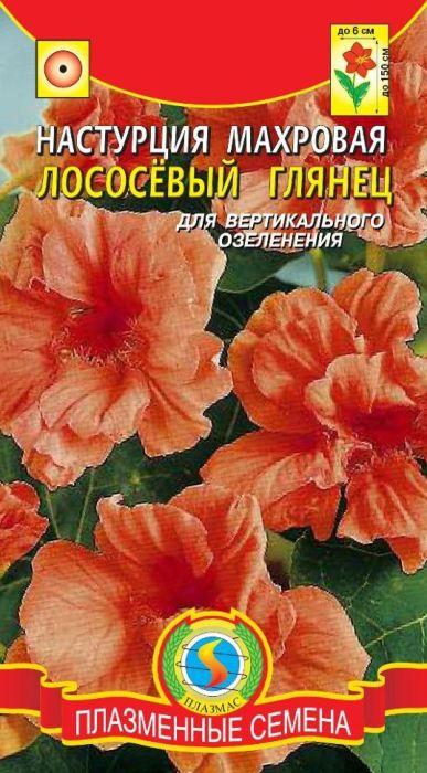 Семена Плазмас Настурция махровая. Лососевый глянец4607171982096Вьющееся травянистое растение с толстым полуплетистым стеблем, высотой до 150 см. Цветки крупные (диаметром до 6 см), махровые и полумахровые, с тонким приятным ароматом. Окраска цветков - лососёвая. Используют в вертикальном озеленении, очень декоративно в вазах, на балконах.ПОСЕВ: в открытый грунт в конце мая по схеме 30 x 35 см. Глубина заделки семян 1,5 см. Настурция предпочитает умеренно плодородную, лёгкую, хорошо дренированную почву. Перед посевом семена замачивают на сутки.УХОД: полив в начале роста, а после зацветания при сильном усыхании почвы. Подкормки проводить лишь до цветения с интервалом 7-10 дней раствором комплексного минерального удобрения. Внимание! При внесении свежих органических удобрений, избытке азота и влаги растение развивает мощную зелёную массу и слабо цветёт.ЦВЕТЕНИЕ: с июля до заморозков.Уважаемые клиенты! Обращаем ваше внимание на то, что упаковка может иметь несколько видов дизайна. Поставка осуществляется в зависимости от наличия на складе.