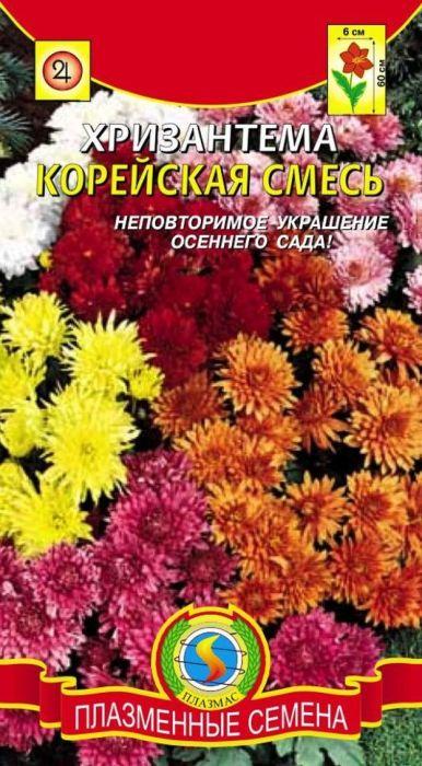 Семена Плазмас Хризантема. Корейская смесь4607171982690Хризантема - один из немногих цветков, который будет радовать вас своимияркими цветками поздней осенью. Возможно выращивать как в оранжерее, так ив открытом грунте. Растение прямостоячее, высотой 60-70 см. Жёлтые,оранжевые, белые, розовые и красные цветки собраны в махровые,полумахровые и одиночные яркие соцветия диаметром 5-6 см. Очень долгостоит в срезке. Прекрасно сочетается с декоративными хвойными кустарникамиили декоративными травами. Хорошо смотрится в сочетании с такими цветами,цветущими до заморозков, как космея и календула. Возможно использование вгоршечной культуре.ПОСЕВ: в феврале-марте на рассаду в ящики с влажным грунтом или в грунт вапреле-мае. Семена не присыпают, так как им для прорастания необходим свет.Ящики с посевами содержат при умеренной температуре. Высадку рассады воткрытый грунт производят после минования угрозы заморозков. Если посевпроизводился в грунт, то растения на постоянное место высаживают веснойследующего года после зимовки на подоконнике дома или в закрытом грунте. Напостоянное место рассаду высаживают по схеме 40-50 см. Хризантема - светолюбивая и теплолюбивая культура, предпочитает защищённое от ветраместо и солнечное местоположение. Любит богатыe органическимивеществами, слабокислые, умеренно-влажные, хорошо дренированные почвы. Напереудобренной почве растения жируют в ущерб цветению.УХОД: рыхление в первоначальный период развития, что способствуетразвитию корневой системы. В дальнейшем растения мульчируют. Донаступления массового цветения растения подкармливают азотно-фосфорнымиминеральными удобрениями с интервалом 10–14 дней. Осенью после цветениястебли обрезают. На зиму растение лучше укрывать, но при очень плотномукрытии растения под ним сопреют. Перед укрытием необходимо произвестиокучивание кустов почвой или произвесткованным до нейтральной реакцииторфом в смеси с песком. После зимы, как только хризантемы начнут отрастать,необходимо обрезать все прошлогодние остатки с