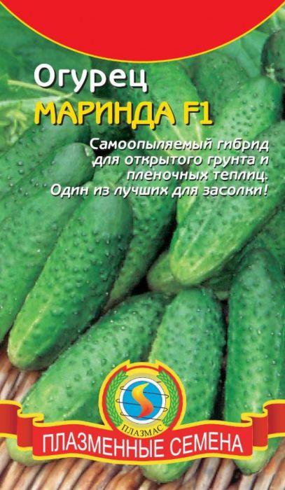 Семена Плазмас Огурец. Маринда F14607171985134