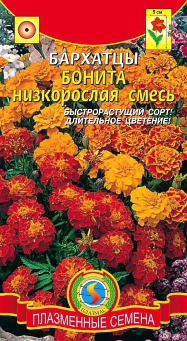 Семена Плазмас Бархатцы. Бонита4607171987909