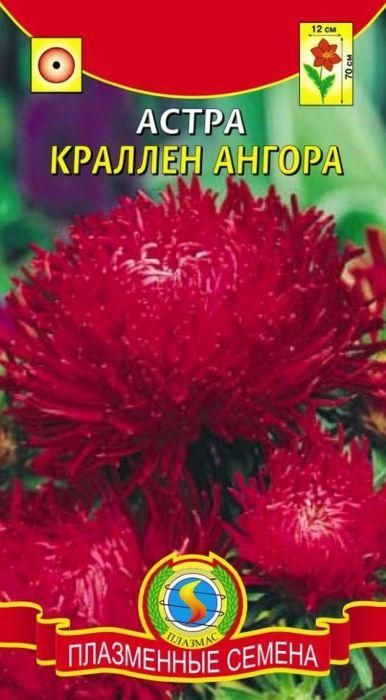 Семена Плазмас Астра. Краллен Ангора4607171987930Растение пирамидальной формы, высотой 65-75 см, формирует несколькоупругих прочных цветоносов. Соцветия плотные, махровые, сочно-краснойокраски, диаметром 10-12 см, состоят из длинных, скрученных в тонкие трубки икрасиво завитых по спирали язычковых цветков, закрывающих небольшой дискиз мелких желтых трубчатых цветков. Астры этой серии великолепны длягрупповых посадок и срезки.ПОСЕВ: на рассаду март-апрель. Семена слегка присыпают землей. Полив -только теплой водой. Посевы выращивают при температуре 15-18°С. Споявлением первой пары настоящих листьев сеянцы пикируют по схеме 6 х 6 см.Перед высадкой рассады в открытый грунт в конце мая, ее закаливают втечение 1-2 недель, снизив температуру до 10°С. Предпочитает солнечное,защищенное от ветра место, с плодородными, известкованными, хорошодренированными, но без свежего навоза почвами. Расстояние междурастениями - 35-40 см для высокорослых сортов, и 20 см для низкорослых.Возможна посадка семенами сразу в открытый грунт (под пленку) в конце апреляс последующим прореживанием всходов.УХОД: редкий, обильный полив. Рекомендуется частое, осторожное рыхление.Необходима подкормка минеральными удобрениями в период бутонизации.ЦВЕТЕНИЕ: с конца июля до заморозков.Уважаемые клиенты! Обращаем ваше внимание на то, что упаковка может иметьнесколько видов дизайна. Поставка осуществляется в зависимости от наличияна складе.