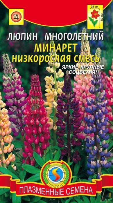 Семена Плазмас Люпин многолетний. Минарет. Низкорослая смесь4607171987992Многолетнее неприхотливое растение, высотой до 50 см. Листья ажурные,крупные, соцветия - гигантские пирамидальные колосья различных яркихокрасок, длиной 20-30 см. Цветки мотылькового типа, последовательнораспускаются снизу вверх и радуют вас с июня по сентябрь. Растениесветолюбивое, зимостойкое. Обогащает почву азотом. Используют в одиночныхи групповых посадках с другими многолетниками в миксбордерах, высаживаютгруппами на газоне. Эффектны в букетах. ПОСЕВ: на рассаду в марте-апреле в горшки. Всходы появляются через 10-20дней, при температуре 15-20°C. Рассаду высаживают в грунт в мае. Привысадке нужно избегать повреждения кома земли. Расстояние междурастениями 20-30 см. Можно сеять прямо в грунт с мая до середины июля. Кпочве нетребовательны, но лучшего развития достигают на суглинистыхслабокислых или слабощелочных почвах, без свежего навоза. Предпочитаетсолнечное местоположение.УХОД: в первый год почву периодически рыхлят и удаляют сорняки. Веснойследующего года подкармливают минеральными удобрениями. В дальнейшемнеобходимо проводить окучивание растений, что способствует развитиюбоковых корней.ЦВЕТЕНИЕ: в июле-сентябре. Отцветшие кисти срезают. При своевременнойобрезке возможно повторное цветение. Уважаемые клиенты! Обращаем ваше внимание на то, что упаковка может иметьнесколько видов дизайна. Поставка осуществляется в зависимости от наличияна складе.