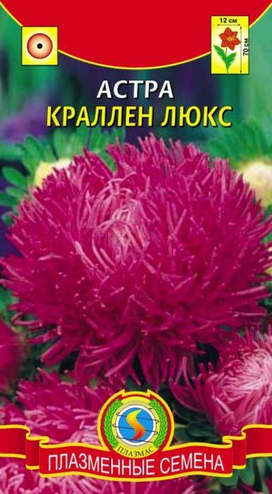 Семена Плазмас Астра. Краллен Люкс4607171988043Куст колонновидный, высотой 65-75 см, формирует несколько упругих прочныхцветоносов. Соцветия плотные, махровые, лилово-розовой окраски, диаметром10-12 см, состоят из длинных, немного закрученных по длине в тонкие трубки икрасиво завитых по спирали язычковых цветков, закрывающих небольшой дискиз мелких желтых трубчатых цветков. Астры этой серии великолепны длягрупповых посадок и срезки.ПОСЕВ: на рассаду март-апрель. Семена слегка присыпают землей. Полив -только теплой водой. Посевы выращивают при температуре 15-18°С. Споявлением первой пары настоящих листьев сеянцы пикируют по схеме 6 х 6 см.Перед высадкой рассады в открытый грунт в конце мая, ее закаливают втечение 1-2 недель, снизив температуру до 10°С. Предпочитает солнечное,защищенное от ветра место, с плодородными, известкованными, хорошодренированными, но без свежего навоза почвами. Расстояние междурастениями - 35-40 см для высокорослых сортов, и 20 см для низкорослых.Возможна посадка семенами сразу в открытый грунт (под пленку) в конце апреляс последующим прореживанием всходов.УХОД: редкий, обильный полив. Рекомендуется частое, осторожное рыхление.Необходима подкормка минеральными удобрениями в период бутонизации.ЦВЕТЕНИЕ: с конца июля до заморозков.Уважаемые клиенты! Обращаем ваше внимание на то, что упаковка может иметьнесколько видов дизайна. Поставка осуществляется в зависимости от наличияна складе.