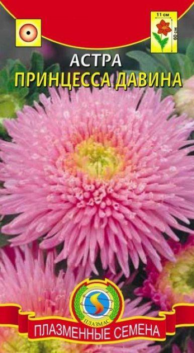 Семена Плазмас Астра. Принцесса Давина4607171988074Принцесса Давина является одним из лучших сортов для срезки. Куст широкий,сильноветвистый, довольно прочный, 50-70 см высотой, 50 см в поперечнике.Цветоносы среднесрочные густо облиственные, до 50 см длиной. Соцветияполусферические, густомахровые, до 11 см в диаметре, часто поникающие.Язычковые цветки лососевой окраски - широкие, расположены в 1-4 ряда покраю соцветия, ближе к центру - длинные трубчатые, окрашенные аналогично, ав самом центре короткие желтые трубчатые цветки. Куст несет до 27 цветущихсоцветий.ПОСЕВ: на рассаду март-апрель. Семена слегка присыпают землей. Полив -только теплой водой. Посевы выращивают при температуре 15-18°С. Споявлением первой пары настоящих листьев сеянцы пикируют по схеме 6 х 6 см.Перед высадкой рассады в открытый грунт в конце мая, ее закаливают втечение 1-2 недель, снизив температуру до 10°С. Предпочитает солнечное,защищенное от ветра место, с плодородными, известкованными, хорошодренированными, но без свежего навоза почвами. Расстояние междурастениями - 35-40 см для высокорослых сортов, и 20 см для низкорослых.Возможна посадка семенами сразу в открытый грунт (под пленку) в конце апреляс последующим прореживанием всходов.УХОД: редкий, обильный полив. Рекомендуется частое, осторожное рыхление.Необходима подкормка минеральными удобрениями в период бутонизации.ЦВЕТЕНИЕ: с середины июля до заморозков.Уважаемые клиенты! Обращаем ваше внимание на то, что упаковка может иметьнесколько видов дизайна. Поставка осуществляется в зависимости от наличияна складе.