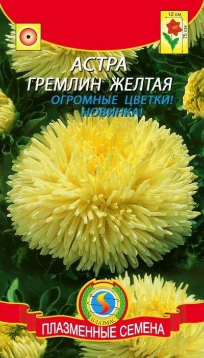 Семена Плазмас Астра желтая. Гремлин4607171988944Этот уникальный высокорослый срезочный сорт коготковых астр будетрадовать вас своими огромными цветками до поздней осени. Яркая насыщеннаяокраска цветков не оставит вас равнодушными, а оригинальная форма слегкаскрученных по длине и загнутых внутрь лепестков поразит вас своейизысканностью и длительностью цветения. Растение формирует узкий прочныйкуст, прекрасно подходящий для посадки в сборные цветники группами, нарабатки - рядами, для срезки.ПОСЕВ: на рассаду март-апрель. Семена слегка присыпают землей. Полив -только теплой водой. Посевы выращивают при температуре 15-18°С. Споявлением первой пары настоящих листьев сеянцы пикируют по схеме 6 х 6 см.Перед высадкой рассады в открытый грунт в конце мая, ее закаливают втечение 1-2 недель, снизив температуру до 10°С. Предпочитает солнечное,защищенное от ветра место, с плодородными, известкованными, хорошодренированными, но без свежего навоза почвами. Расстояние междурастениями - 35-40 см для высокорослых сортов, и 20 см для низкорослых.Возможна посадка семенами сразу в открытый грунт (под пленку) в конце апреляс последующим прореживанием всходов.УХОД: редкий, обильный полив. Рекомендуется частое, осторожное рыхление.Необходима подкормка минеральными удобрениями в период бутонизации.ЦВЕТЕНИЕ: июль-сентябрь.Уважаемые клиенты! Обращаем ваше внимание на то, что упаковка может иметьнесколько видов дизайна. Поставка осуществляется в зависимости от наличияна складе.