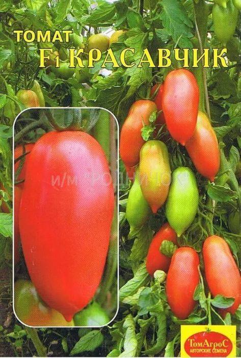 Семена Гисок Томат. Красавчик F14627075370416