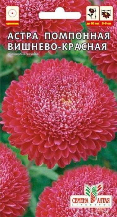 Семена Алтая Астра. Помпонная Вишнево-Красная4630002518805