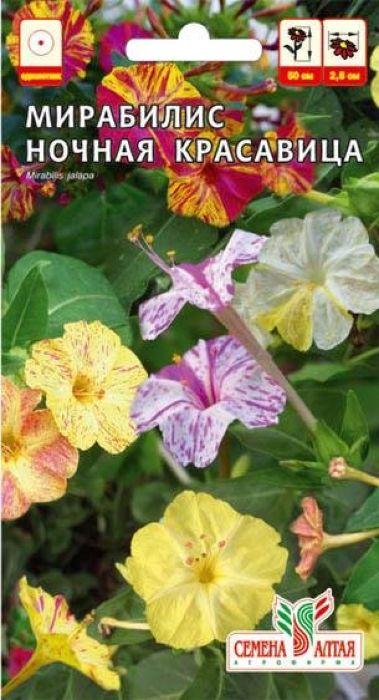 Семена Алтая Мирабилис. Ночная красавица4630043104500Травянистое растение, выращивается в однолетней культуре, относится к семейству ночецветные. Кустики высотой 40-50 см. Оригинален во всем: цветет с 16 часов вечера до рассвета, источает приятный аромат. В пасмурные дни бутоны мирабилиса остаются открытыми даже днем, на одном растении могут быть цветки разной окраски: желтой, красной, оранжевой, карминной. Диаметр цветков 2,5 см, с длинной трубкой, они собраны в щитковидные соцветия. Цветение обильное и продолжительное, с июня до заморозков. Используется в приусадебном и городском озеленении. Растение неприхотливое, теплолюбивое, засухоустойчивое. Любит хорошее освещение с легким притенением, суглинистые известкованные почвы без застоя воды. Семена высевают на рассаду в начале апреля, либо непосредственно в грунт в мае. Очень легко выращивается из семян, можно сохранять в виде годовалых клубней.Уважаемые клиенты! Обращаем ваше внимание на то, что упаковка может иметь несколько видов дизайна. Поставка осуществляется в зависимости от наличия на складе.