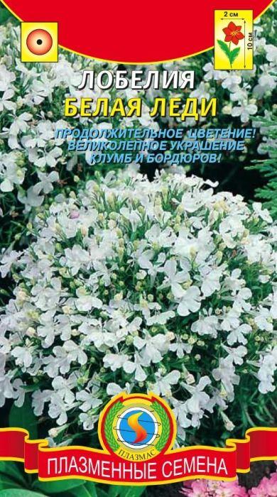 Семена Плазмас Лобелия. Белая леди4650001401663Красиво цветущее изящное растение с компактными шаровидными кустиками высотой до 10-15 см. Сильно ветвящиеся стебли густо покрыты небольшими, 1,5-2 см в диаметре, двугубыми цветками чистого белого цвета, расположенными на коротких цветоножках, по одному в пазухах листьев. Отличается обильным и достаточно продолжительным цветением, с июня до заморозков. Зацветает через 70-80 дней после посева. Идеально подходит для украшения цветников, рабаток,в групповых посадках. Великолепно смотрится на переднем крае бордюра.ПОСЕВ: на рассаду в марте-апреле. Глубина заделки семян 0,2 см. После появления двух первых настоящих листьев сеянцы пикируют. В открытый грунт высаживают когда минует угроза заморозков, по схеме 10 x 15 см. Подходит любая влажная садовая земля богатая гумусом, солнечное или полутенистое место.УХОД: для обильного и длительного цветения необходимы периодические подкормки и хороший полив в сухую погоду. В августе, когда минует первая волна цветения, отцветшие стебли растения надо низко подрезать (на высоте до 5см), подкормить, подрыхлить и полить, тогда наступит вторая волна цветения, которая продлится до заморозков.ЦВЕТЕНИЕ: июнь-сентябрь.Уважаемые клиенты! Обращаем ваше внимание на то, что упаковка может иметь несколько видов дизайна. Поставка осуществляется в зависимости от наличия на складе.