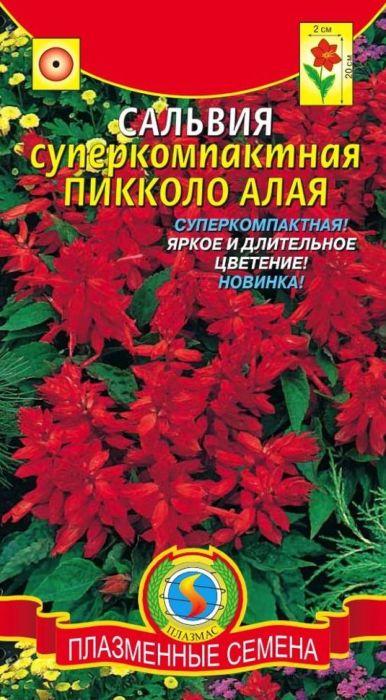 Семена Плазмас Сальвия суперкомпактная. Пикколо Алая4650001402431