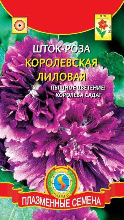 Семена Плазмас Шток-роза лиловая. Королевская4650001402509Великолепное обильно цветущее растение высотой до 50 см, с гигантскимияркими соцветиями, по праву является украшением любого сада. Листьякрупные, шероховато-волосистые, расположены в очередном порядке. Цветкикрупные, махровые, до 9 см в диаметре, сочной пурпурной окраски, с приятнымароматом, собраны в большие кисти соцветий. Используется для групповыхпосадок, миксбордеров, декорирования стен, изгородей и на срезку. Хорошосочетается с яркими летниками (подсолнечник, космея) и высокимимноголетниками (рудбекия, флоксы). Срезанные в стадии бутона соцветиявеликолепно распускаются в воде.ПОСЕВ: семенами в мае на постоянное место (2-3 семени в лунку), можно такжевыращивать через рассаду (семена необходимо замачивать в течение 24 часов).Всходы появляются через 12-15 дней. Посевы прореживают, формируя площадьпитания для растений 40 х 50 см. Для хорошего роста и развития следуетвыращивать на солнечных местах, удобренной рыхлой почве.УХОД: умеренный полив, рыхление почвы, подкормка комплекснымиминеральными удобрениями (NPK).ЦВЕТЕНИЕ: июль-сентябрь. Уважаемые клиенты! Обращаем ваше внимание на то, что упаковка может иметьнесколько видов дизайна. Поставка осуществляется в зависимости от наличияна складе.
