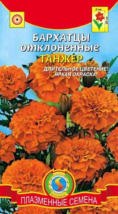 Семена Плазмас Бархатцы отклоненные. Танжер4650001403582Низкорослые, компактные обильно цветущие однолетники с крупнымимахровыми соцветиями великолепно украсят любую цветочную композицию.Образуют куст плотной структуры, компактной формы, густоветвистый, с темно- зелеными листьями. Бархатистые ярко-оранжевые цветки собраны вгвоздиковидные соцветия-корзинки 4-5 см в диаметре. Цветут обильно ипродолжительно, с июня до заморозков. Сохраняют свою декоративность втечение всего лета. Бархатцы используют во всех типах цветников. Онивеликолепно заполняют промежутки между соседними растениями, а такжеукрашают террасы, балконы и вазоны, хороши для создания бордюров.Высаженные рядом с огородными культурами, бархатцы уменьшают ихпоражение грибковыми заболеваниями, особенно фузариозом, защищают отнекоторых видов нематод. Красиво смотрятся в сочетании с примулами ицинерариями.Посев: на рассаду в начале апреля. Глубина заделки семян 1-2 см. Послеокончания заморозков рассаду высаживают в открытый грунт по схеме 15 х 20 см.Возможнапрямая посадка семян в грунт, но при этом сокращаются срокицветения. Бархатцы нетребовательны к почве и влаге, но при избытке влагикрупные соцветия начинают загнивать. Предпочитает открытые солнечныеместа, но может нормально расти и в полутени.Уход: растение светолюбиво, засухоустойчиво. Для хорошего роста и цветениярастение нужно поливать в начале роста и подкармливать (2-3 подкормки синтервалом 7-10 дней).Цветение: с июня до заморозков. Для продления сроков цветения увядшиецветки удаляют. Уважаемые клиенты! Обращаем ваше внимание на то, что упаковка может иметьнесколько видов дизайна. Поставка осуществляется в зависимости от наличияна складе.