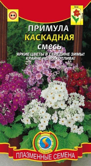 Семена Плазмас Примула каскадная. Cмесь4650001404282Раннецветущее растение, которое своими нежными цветками будет украшатьуголки вашего дома или сада с самого начала весны. Растение неприхотливо,восприимчиво только к теплому содержанию, яркому (летнему) солнечномусвету и пересушке земляного кома. Отлично подходит для выращивания как взимний период в помещении на холодном подоконнике в горшках - каккомнатный двулетник, так и в саду - как сезонный однолетник. Растет в видерыхлого кустика, высотой до 35 см. Светло-зеленые листья собраны вприкорневую розетку. Душистые цветки, диаметром 1-2 см, собраны взонтиковидные соцветия, которые часто бывают 2-х, 3-х ярусными и напоминаюткаскад. Отлично подходит для украшения подоконника, оформления садовыхдорожек, водоемов, художественных композиций с камнями, прекрасносмотрится на специальных декоративных столиках и подставках.ПОСЕВ: под зиму в открытый грунт или лучше в ящики, чтобы не потерятьсеянцы или на рассаду ранней весной. При выращивании через рассаду, посевпроводят в феврале-марте. Сеют поверхностно, т.к. для лучшего прорастаниясеменам необходим свет. Температура для прорастания 16-18°С. Прорастаниесемян ускоряется, если накрыть посевы снегом на несколько дней. Высеянныеосенью семена примул прорастают через 14-18 недель, а высеянные весной —через 20-30 дней. В дальнейшем всходы пикируют. Вторую пикировку проводятпри смыкании листьев. Больше всего ей полезно светлое, однако несолнечноеместо, немного влаги, свежий воздух и температура не выше 10-12 °С. Всентябре растения сажают в горшки с земляной смесью: 3 части листовой, по 1части дерновой земли и перегноя с добавлением на 1 куб.м. смеси 1 кгазотнокислого калия и 2 кг рубленых перьев или костяной муки. Высаживают бездренажа, не уплотняя почвы.УХОД: поливать следует осторожно, избегая образования постоянной сыростив горшке, однако нельзя допускать пересыхание почвы, которая должна бытьпостоянно увлажненной. При переносе из помещения в сад рекомендуетсясначала поместить ц