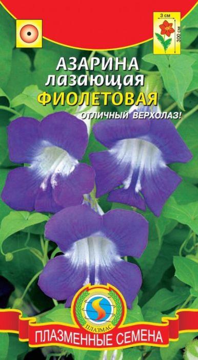 Семена Плазмас Азарина лазающая. Фиолетовая4650001407283